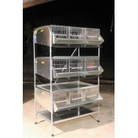 "36""   3 Tier Pen Community quail Cages  ( 3 Tier ) PVC floor"