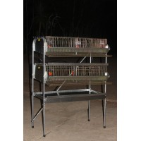"36""  H.D Double Rack Community Quail Pen (Full Sections)"