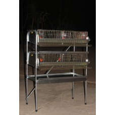 "30"" H.D Double Rack Community Pen (Full Sections) PVC floor"