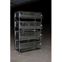 "36""-4 Tier Heavy Duty Battery  Quail Cage  (8 Sections)"