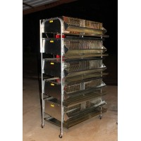 "36""-5 Tier Breeding Battery (7 Sections) PVC floor"
