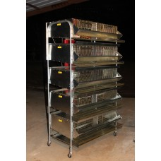 "36""-5 Tier Breeding Battery (7 Sections)"